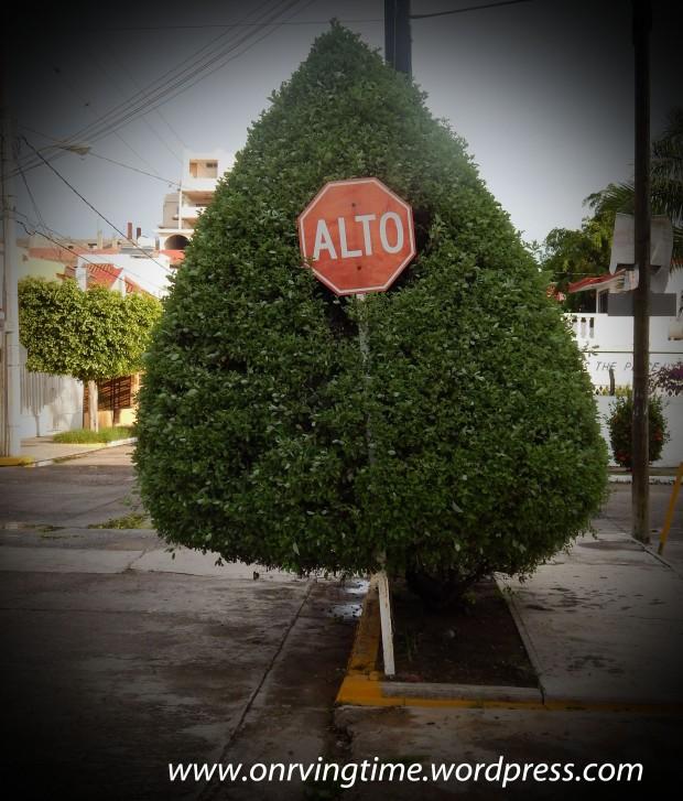 Tree stop